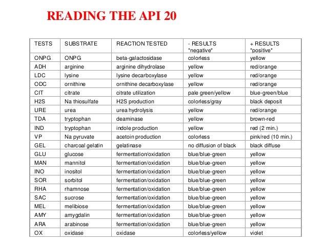 api test rh slideshare net bioMerieux API Web API 20E Identification Book