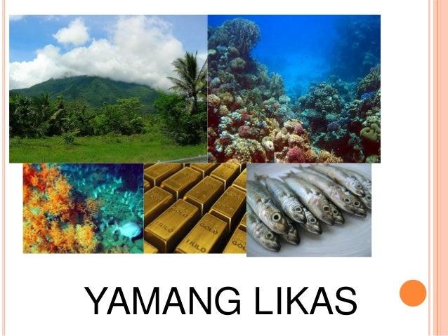 likas na yaman ng pilipinas Tampok ang mga ito sa panlalawigang watawat at sagisag ng lalawigan ng bohol na sumasagisag nang mayamang likas na yaman ng  sagana ang pilipinas sa likas na yaman.