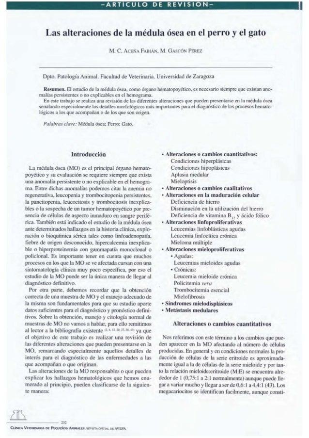 -ARTICULO  DE  REVI510N-  Las alteraciones de la médula ósea en el perro y el gato M. C.  ACEÑA FABIÁN,  M. GASCÓN  PÉREZ ...