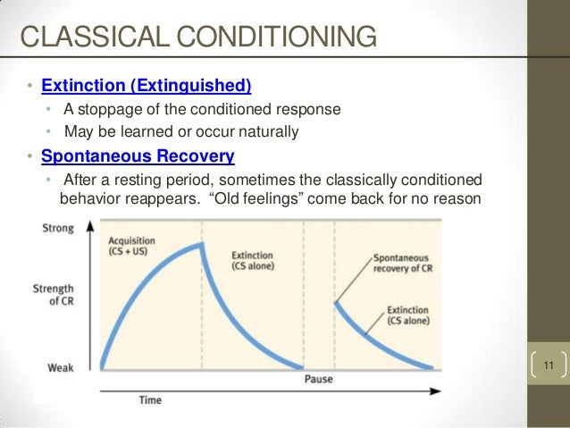 biological constraints in classical conditioning A conditioned taste aversion involves the avoidance of a certain food following a period of illness after consuming that food these aversions are a great example of how classical conditioning can result in changes in behavior, even after only one incidence of feeling ill.