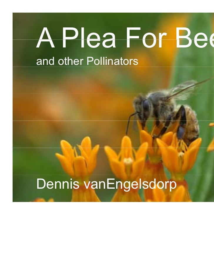 A Plea For Beesand other PollinatorsDennis vanEngelsdorp