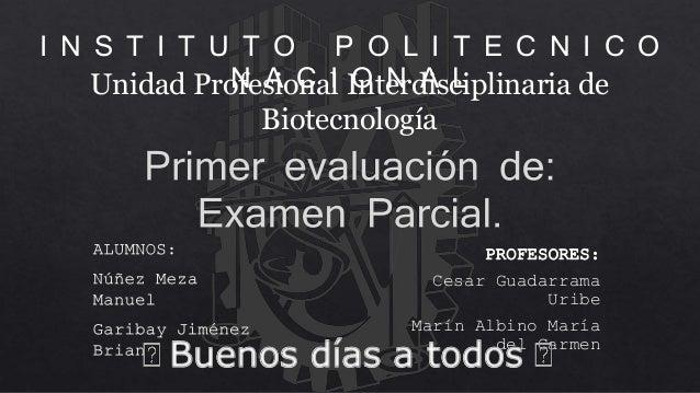 Unidad Profesional Interdisciplinaria de Biotecnología I N S T I T U T O P O L I T E C N I C O N A C I O N A L PROFESORES:...