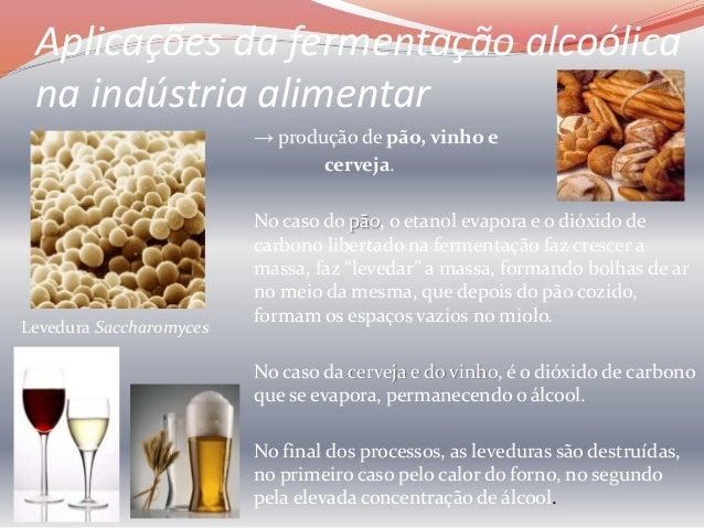 Aplicações da fermentação na indústria alimentar