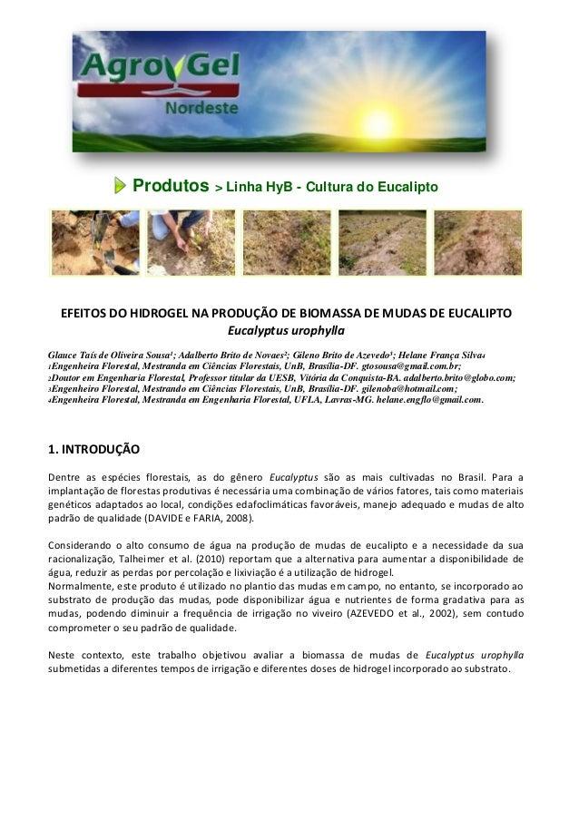 Produtos > Linha HyB - Cultura do Eucalipto EFEITOS DO HIDROGEL NA PRODUÇÃO DE BIOMASSA DE MUDAS DE EUCALIPTO Eucalyptus u...