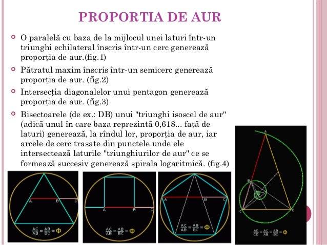 PROPORTIA DE AUR   O paralelă cu baza de la mijlocul unei laturi într-un    triunghi echilateral înscris într-un cerc gen...