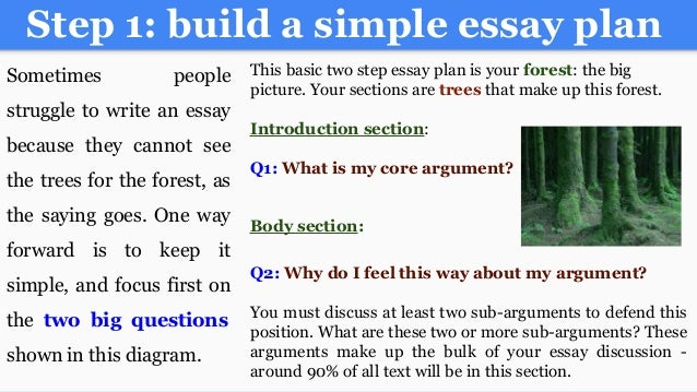 writing an a college essay paper 34 step 1 build a simple essay