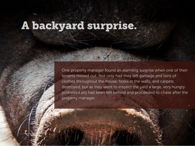 Real Property Management Horror Stories Slide 3