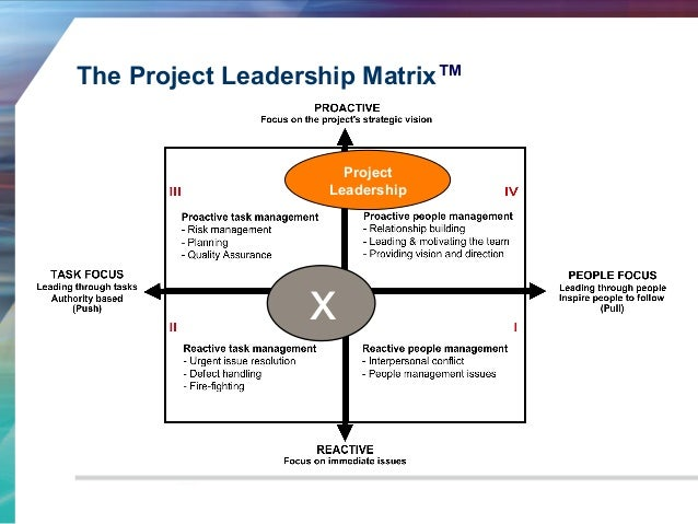 project report on leadership pdf