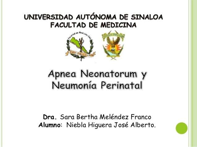Dra. Sara Bertha Meléndez FrancoAlumno: Niebla Higuera José Alberto.