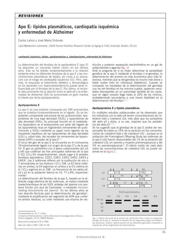 REVISIONES  Apo E: lípidos plasmáticos, cardiopatía isquémica y enfermedad de Alzheimer Carlos Lahoz y José María Ordovás ...