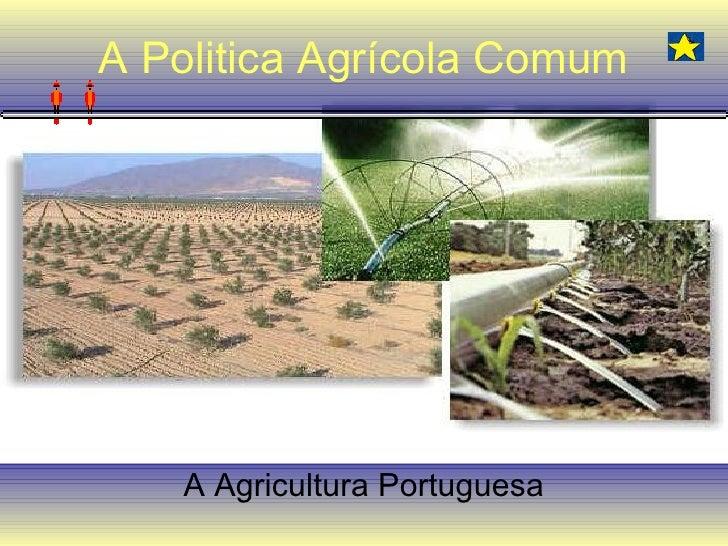 A Politica Agrícola Comum A Agricultura Portuguesa