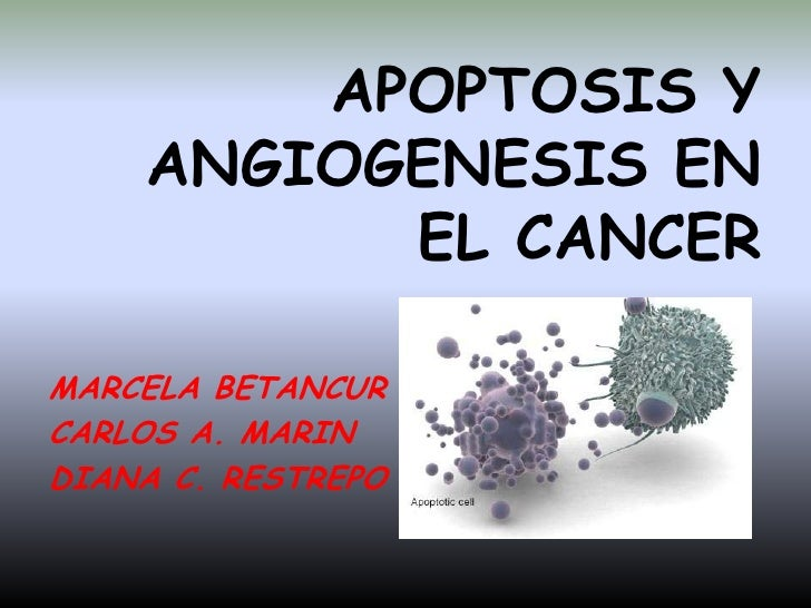 APOPTOSIS Y ANGIOGENESIS EN EL CANCER<br />MARCELA BETANCUR<br />CARLOS A. MARIN<br />DIANA C. RESTREPO<br />