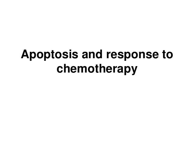 Apoptosis and response to chemotherapy