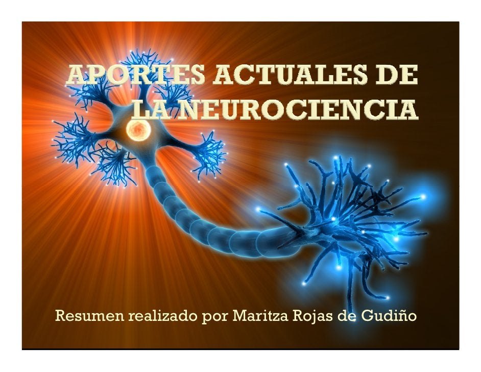 Resumen realizado por Maritza Rojas de Gudiño