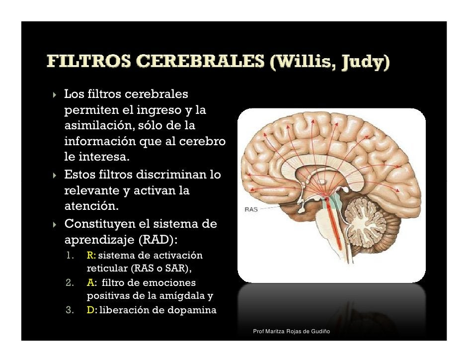 Los filtros cerebralespermiten el ingreso y laasimilación, sólo de lainformación que al cerebrole interesa.Estos filtros d...