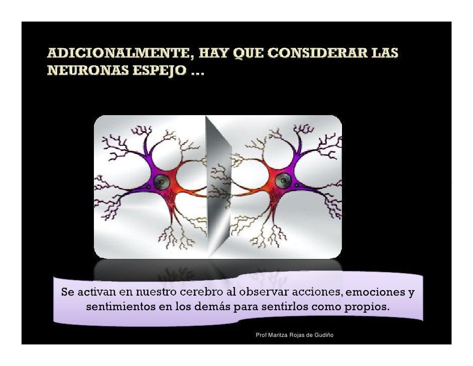 Se activan en nuestro cerebro al observar acciones, emociones y    sentimientos en los demás para sentirlos como propios. ...