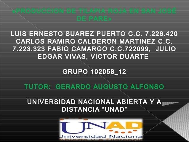 «PRODUCCION DE TILAPIA ROJA EN SAN JOSÉ              DE PARE»LUIS ERNESTO SUAREZ PUERTO C.C. 7.226.420 CARLOS RAMIRO CALDE...
