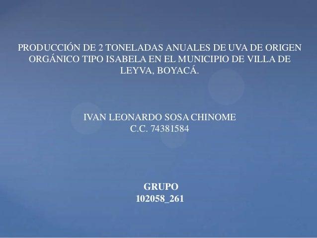 PRODUCCIÓN DE 2 TONELADAS ANUALES DE UVA DE ORIGEN ORGÁNICO TIPO ISABELA EN EL MUNICIPIO DE VILLA DE LEYVA, BOYACÁ.  IVAN ...