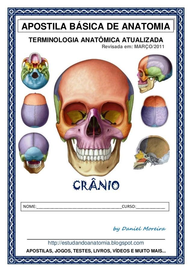 TERMINOLOGIA ANATÔMICA ATUALIZADA Revisada em: MARÇO/2011 CRÂNIO by Daniel Moreira http://estudandoanatomia.blogspot.com N...