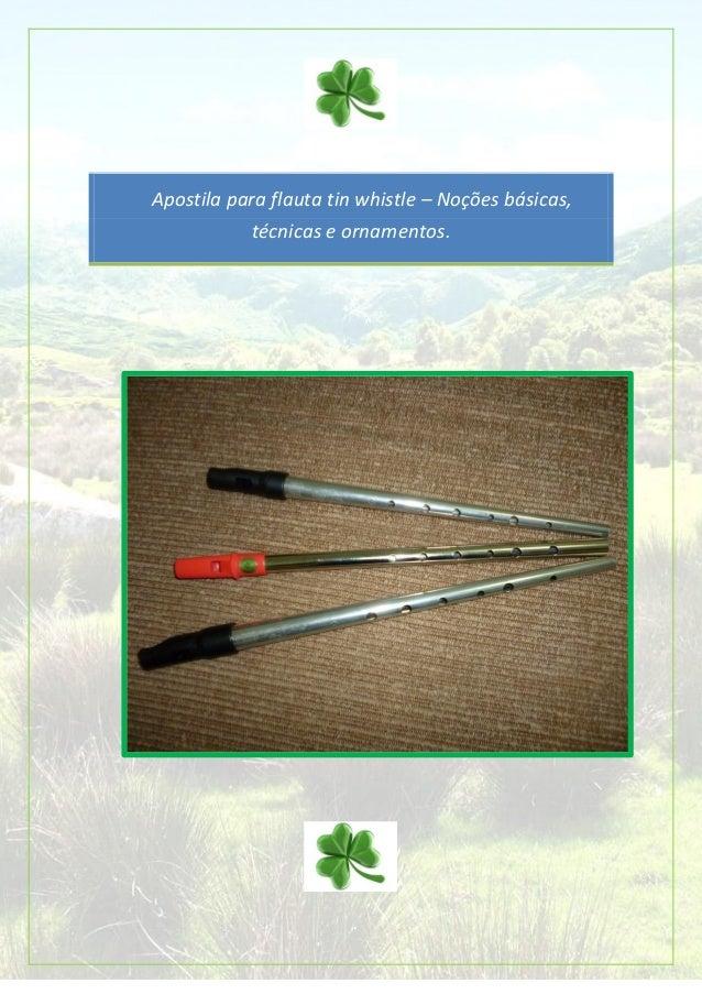 Apostila para flauta tin whistle – Noções básicas,           técnicas e ornamentos.