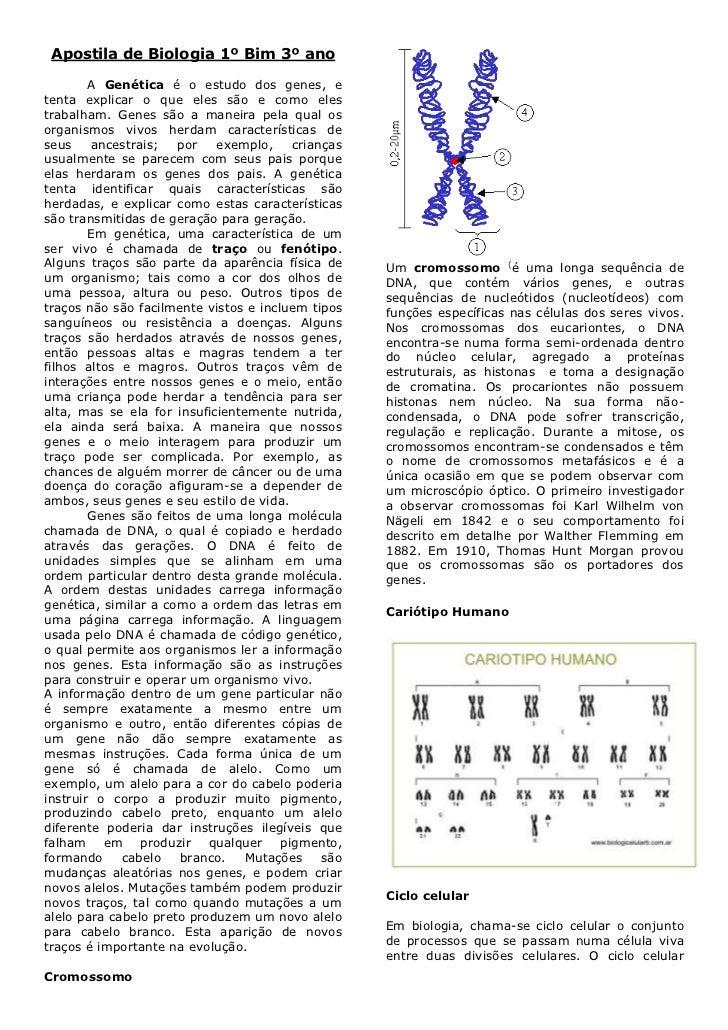 Apostila Biologia 1ºBimestre