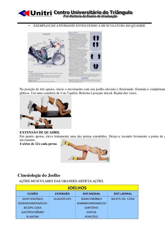 •   EXEMPLOS DE ATIVIDADES ENVOLVENDO A MUSCULATURA DO QUADRIL Na posição de três apoios, inicie o movimento com um joelho...