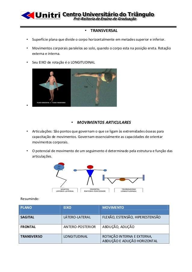 • TRANSVERSAL   •    Superfície plana que divide o corpo horizontalmente em metades superior e inferior.   •    Movimentos...