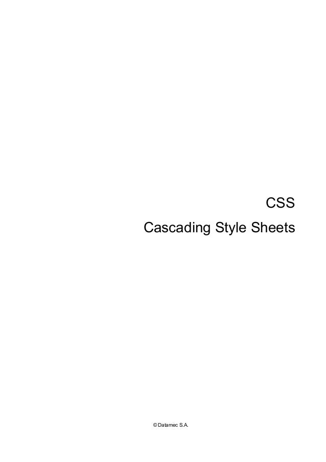 CSS Cascading Style Sheets © Datamec S.A.