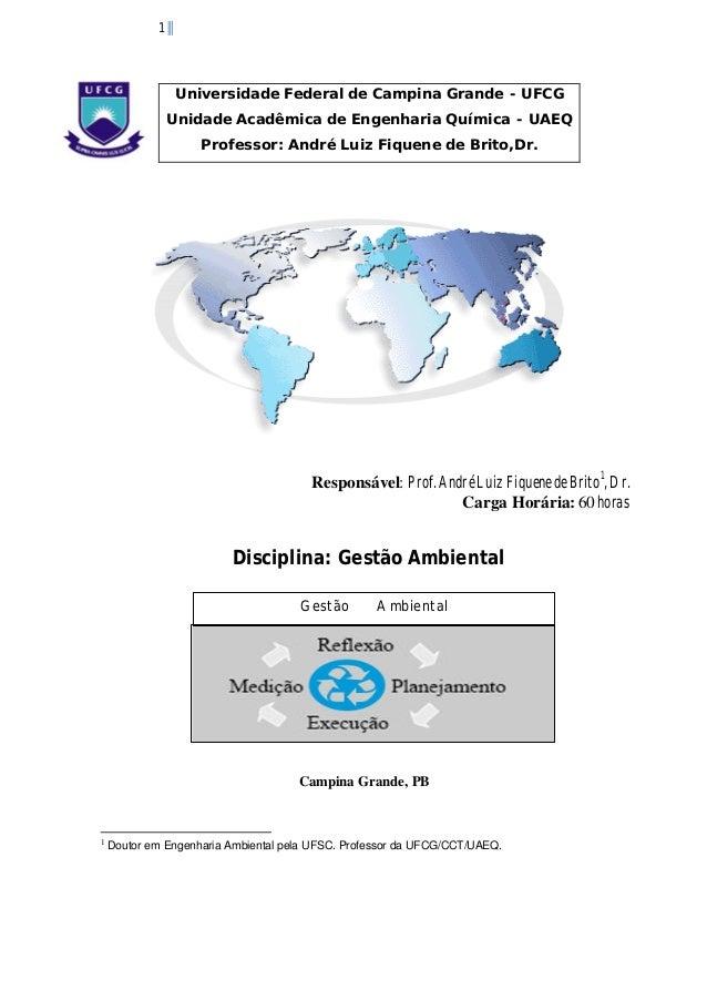 1  Universidade Federal de Campina Grande - UFCG Unidade Acadêmica de Engenharia Química - UAEQ Professor: André Luiz Fiqu...