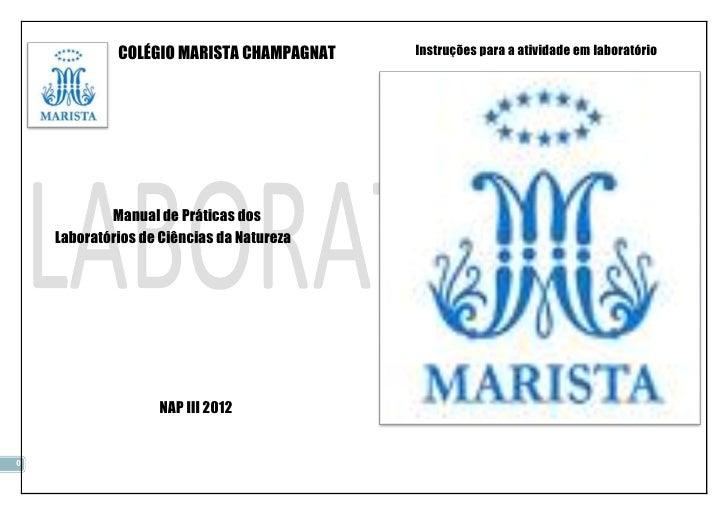 COLÉGIO MARISTA CHAMPAGNAT    Instruções para a atividade em laboratório            Manual de Práticas dos    Laboratórios...