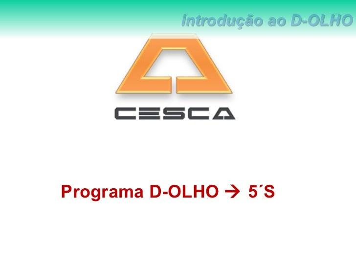 Programa D-OLHO    5´S