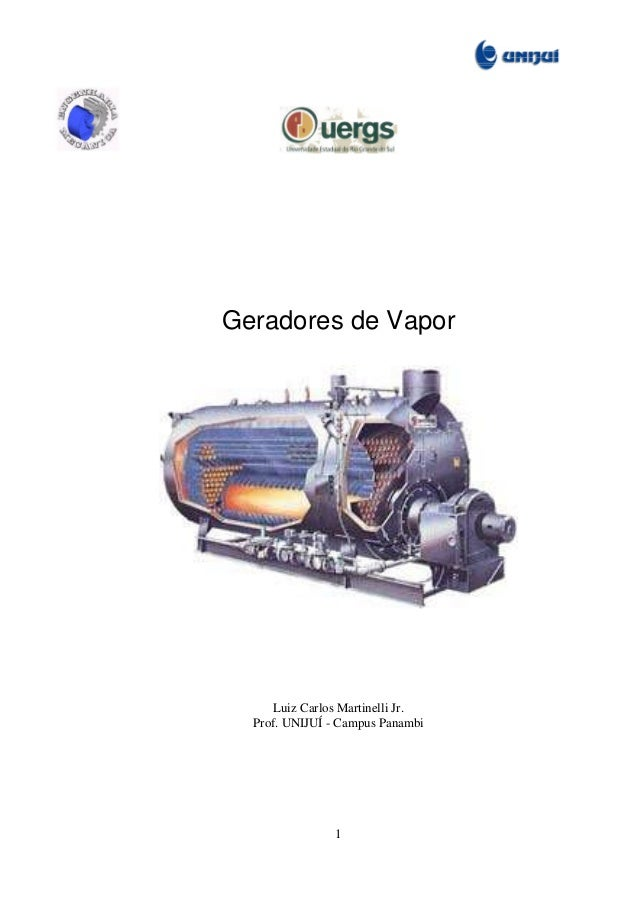 Geradores de Vapor  Luiz Carlos Martinelli Jr. Prof. UNIJUÍ - Campus Panambi  1