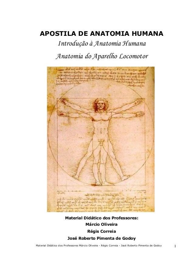 APOSTILA DE ANATOMIA HUMANA  Introdução à Anatomia Humana Anatomia do Aparelho Locomotor  Material Didático dos Professore...
