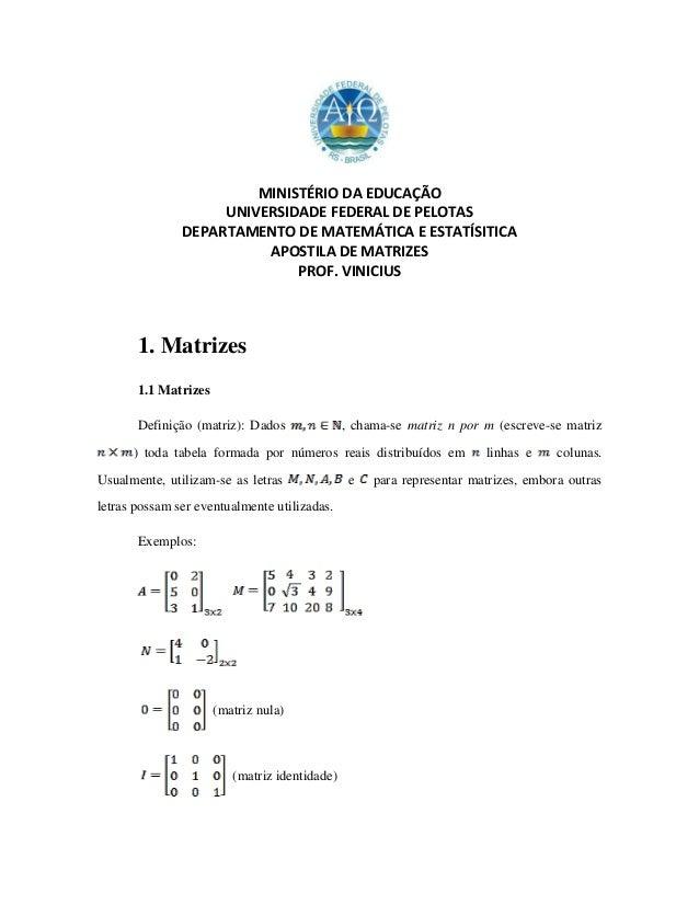 MINISTÉRIO DA EDUCAÇÃO UNIVERSIDADE FEDERAL DE PELOTAS DEPARTAMENTO DE MATEMÁTICA E ESTATÍSITICA APOSTILA DE MATRIZES PROF...