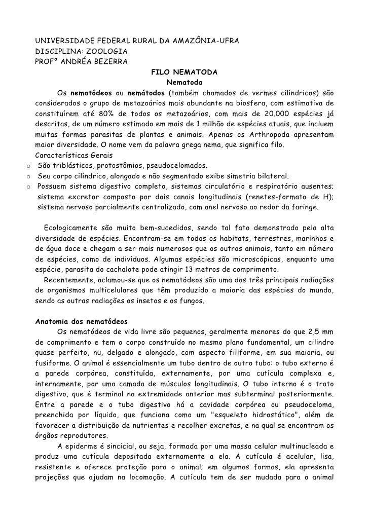 UNIVERSIDADE FEDERAL RURAL DA AMAZÔNIA-UFRA  DISCIPLINA: ZOOLOGIA  PROFª ANDRÉA BEZERRA                                   ...