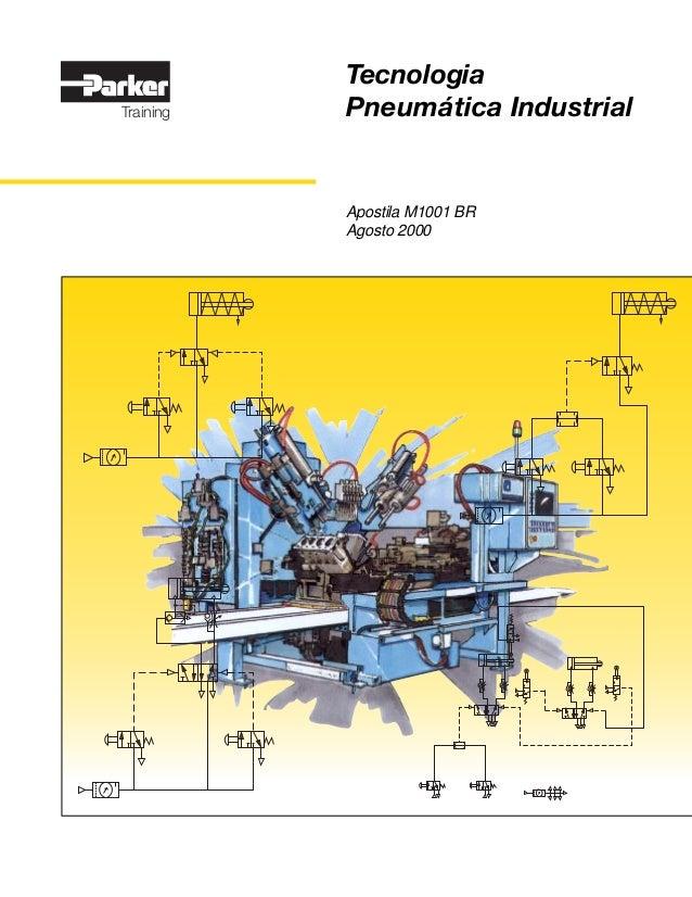 TecnologiaTraining   Pneumática Industrial           Apostila M1001 BR           Agosto 2000