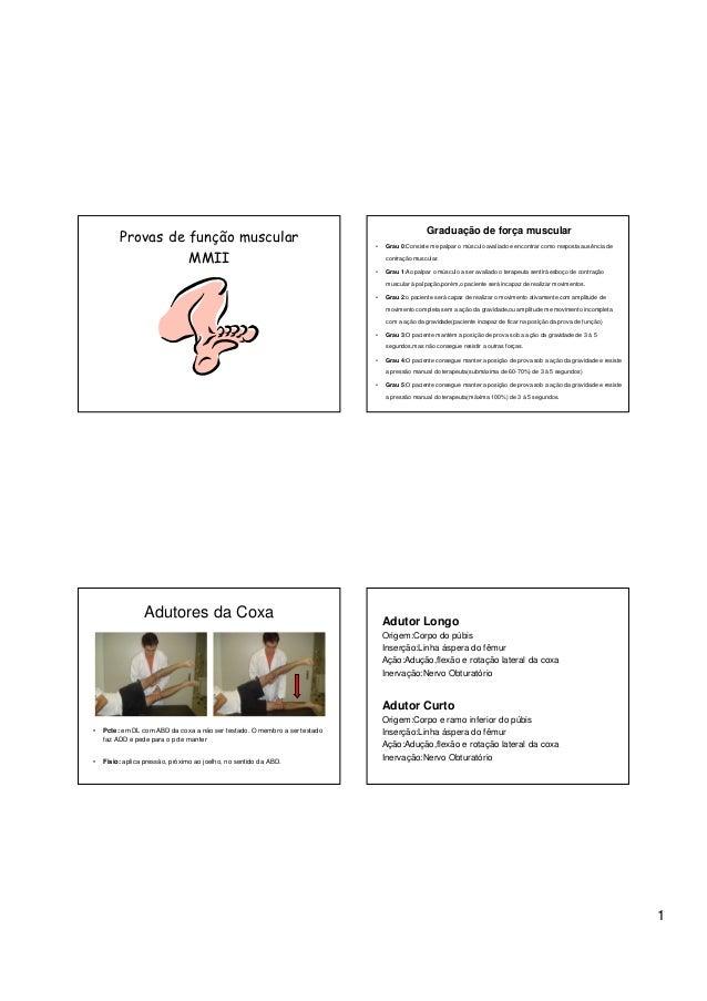 Graduação de força muscular         Provas de função muscular                                          •   Grau 0:Consiste...