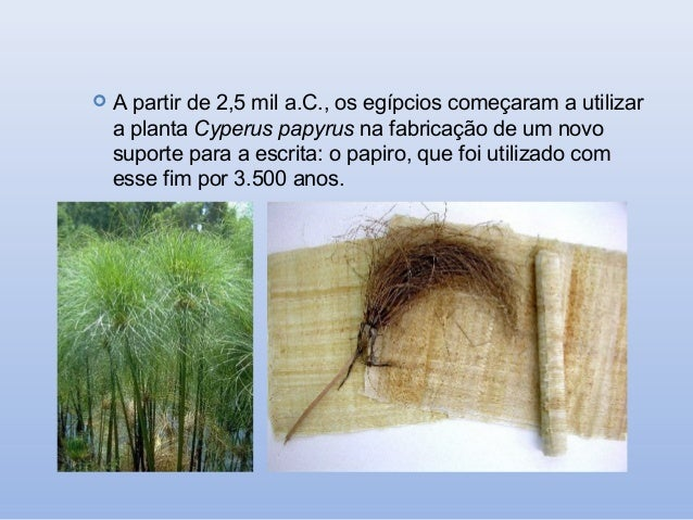   A partir de 2,5 mil a.C., os egípcios começaram a utilizar a planta Cyperus papyrus na fabricação de um novo suporte pa...