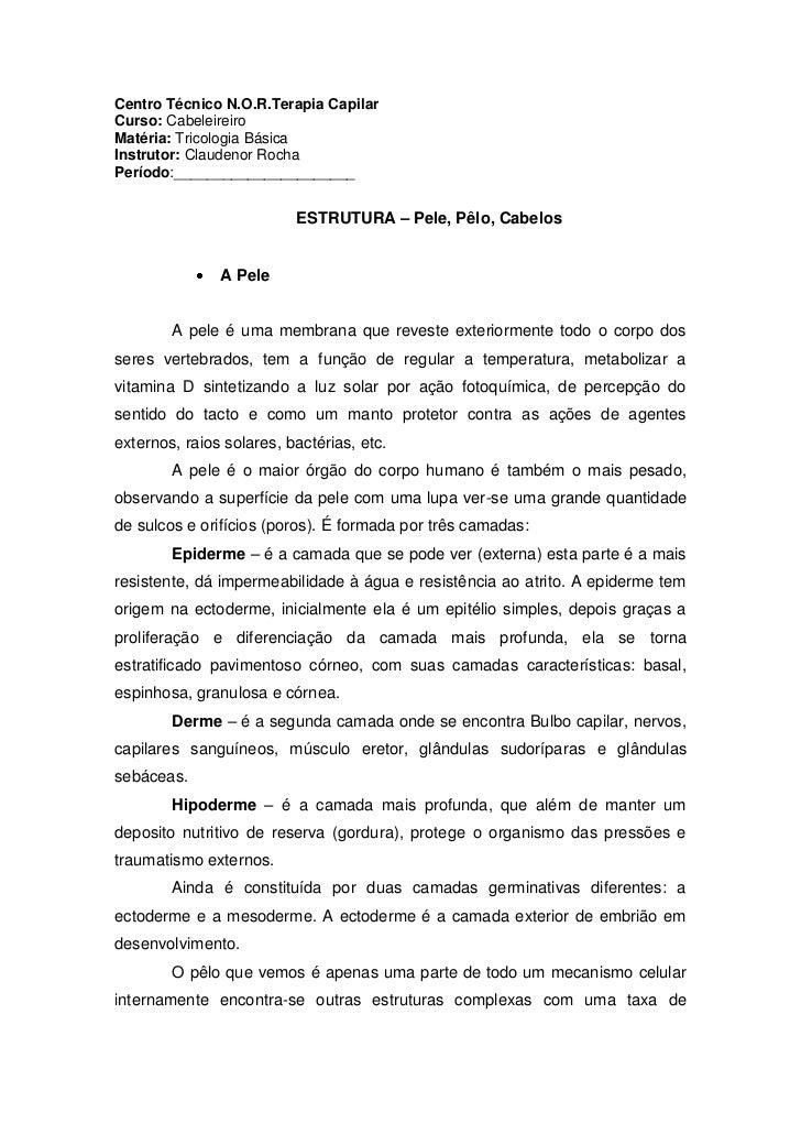 Centro Técnico N.O.R.Terapia Capilar<br />Curso: Cabeleireiro<br />Matéria: Tricologia Básica<br />Instrutor: Claudenor Ro...