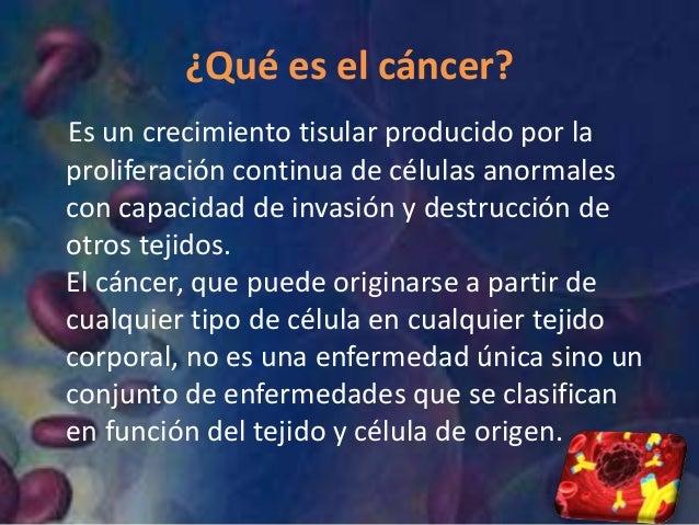 Apoyando la lucha contra el cancer - Alimentos que evitan el cancer ...