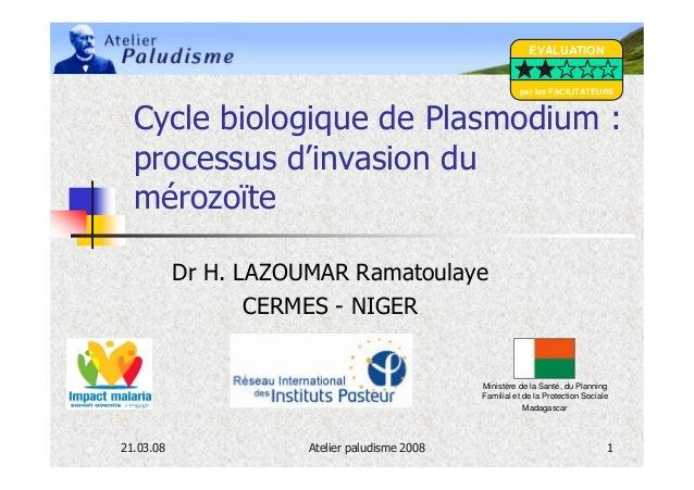 EVALUATION                                                         par les FACILITATEURS  Cycle biologique de Plasmodium :...
