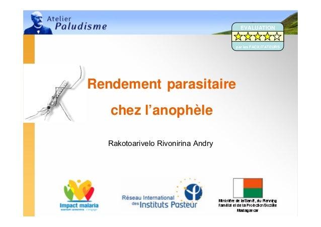 EVALUATION                                   par les FACILITATEURSRendement parasitaire   chez l'anophèle  Rakotoarivelo R...