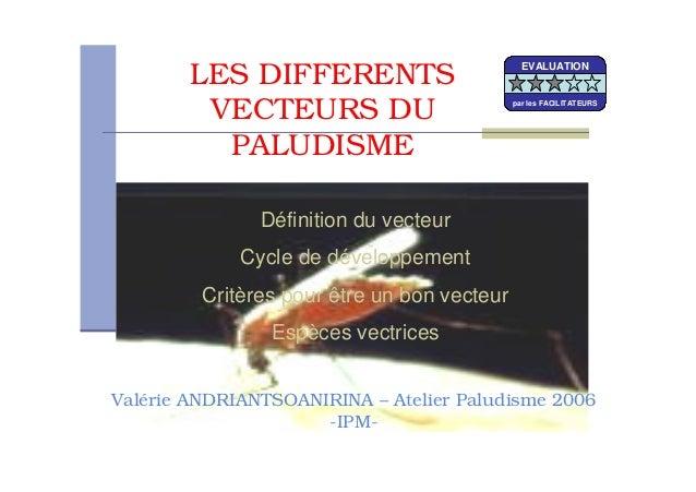 LES DIFFERENTSVECTEURS DUPALUDISMEDéfinition du vecteurCycle de développementCritères pour être un bon vecteurEspèces vect...
