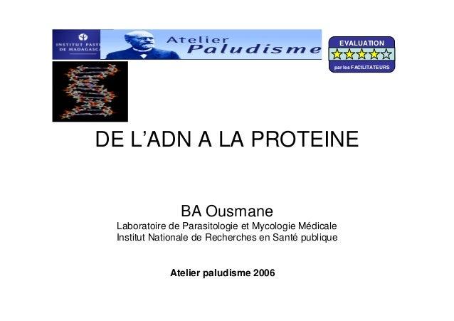 DE L'ADN A LA PROTEINEBA OusmaneLaboratoire de Parasitologie et Mycologie MédicaleInstitut Nationale de Recherches en Sant...