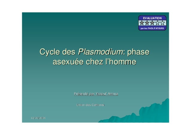 Cycle desCycle des PlasmodiumPlasmodium: phase: phaseasexuasexuéée chez le chez l''hommehommeEVALUATIONpar les FACILITATEU...