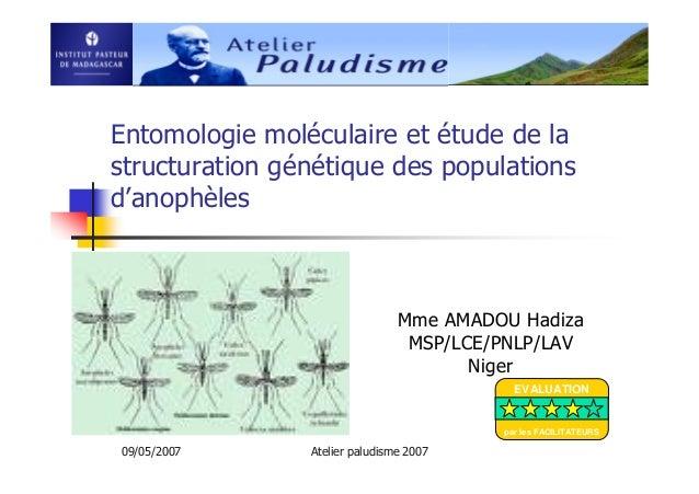 09/05/2007 Atelier paludisme 2007Entomologie moléculaire et étude de lastructuration génétique des populationsd'anophèlesM...
