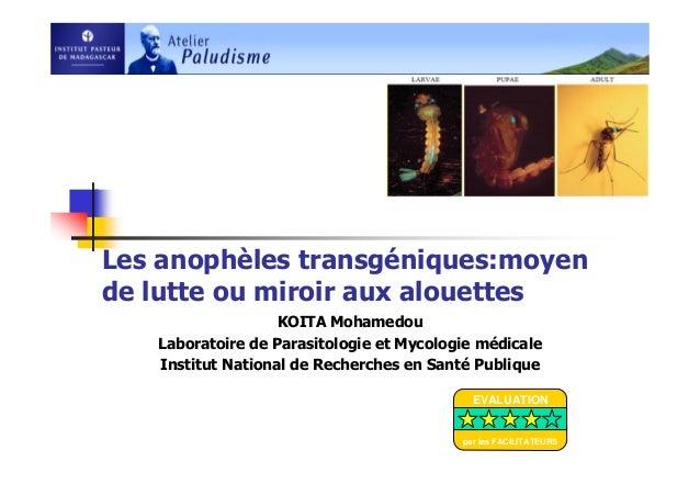 Les anophèles transgéniques:moyende lutte ou miroir aux alouettesKOITA MohamedouLaboratoire de Parasitologie et Mycologie ...