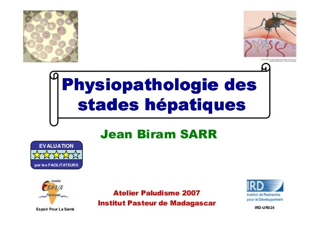 Physiopathologie desPhysiopathologie desPhysiopathologie desPhysiopathologie desstades hstades hstades hstades héééépatiqu...