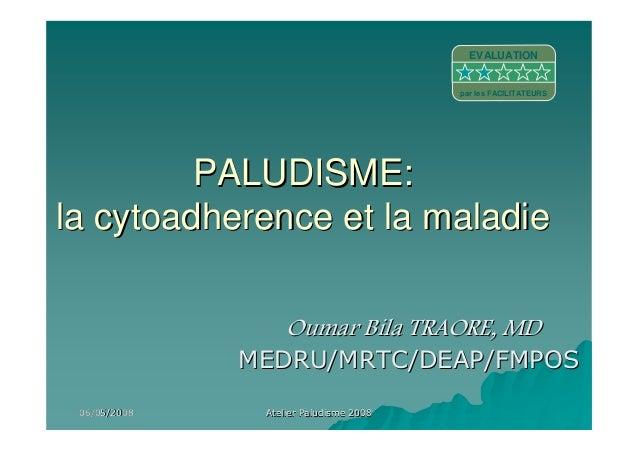 06/05/200806/05/2008 Atelier Paludisme 2008Atelier Paludisme 2008PALUDISME:PALUDISME:la cytoadherence et la maladiela cyto...
