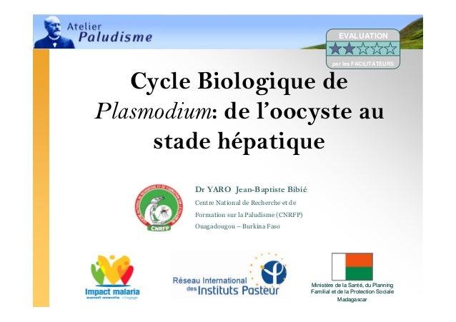 Atelier Paludisme 20081 Ministère de la Santé, du PlanningFamilial et de la Protection SocialeMadagascarMinistère de la Sa...